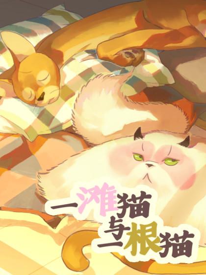 一滩猫与一根猫
