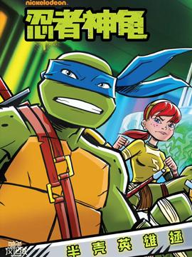忍者神龟:小金书与绘本集